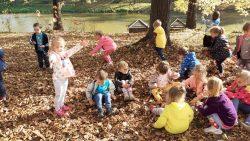 Podziwiamy kolory jesieni